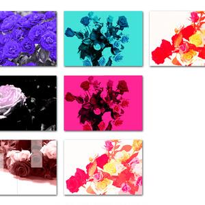 表紙用背景素材 薔薇 02