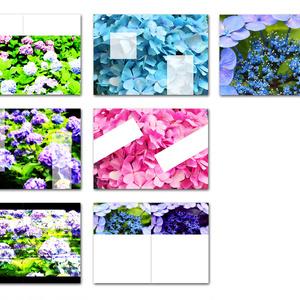 表紙用背景素材 紫陽花 01