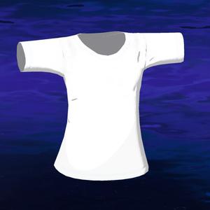 スキニング済みTシャツ(無料配布あり)