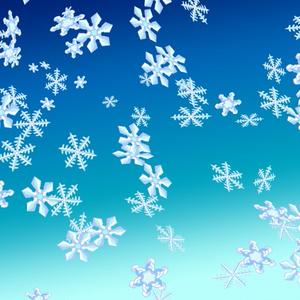 雪の結晶ブラシ