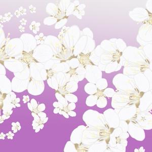 梅の花(3~4月)ブラシ