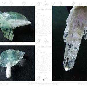 写真集「葉魚の瞳と魔女の牙」