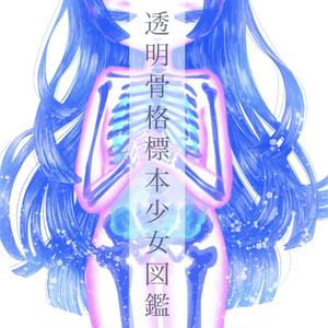 透明骨格標本少女図鑑