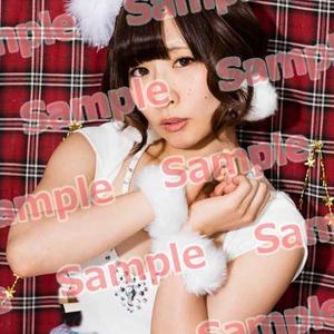 2015X'masセットD【受注受付12/31まで】