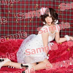 2015X'masセットC【受注受付12/31まで】