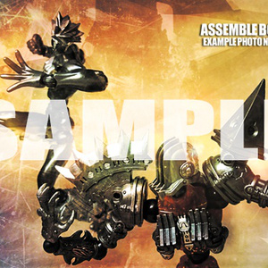 ASSEMBLE BORG EXAMPLE PHOTO NOTES 01