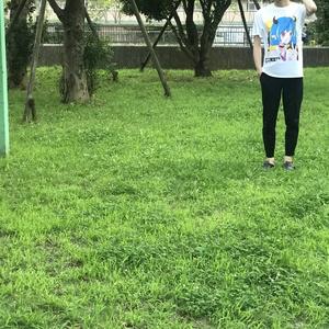 【歩くアート】デビギャルTシャツ:カキツバタ