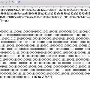 16進数→2進数自動変換フォント