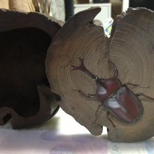 【原画】小物入れ:赤いカブトムシ (Rhinoceros beetle)