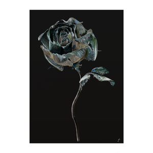 BLACK ROSE ONE
