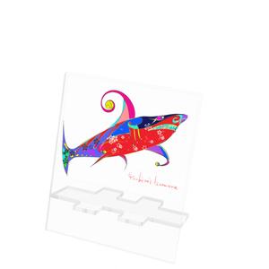 和なサメ(^◇^)