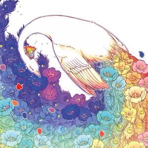 虹孔雀のポストカード