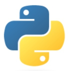 【執筆中のため割引】Pythonプログラミング基本演習(電子書籍、50ページ)