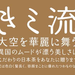 姫明朝ともえごぜん(3フォントSET)