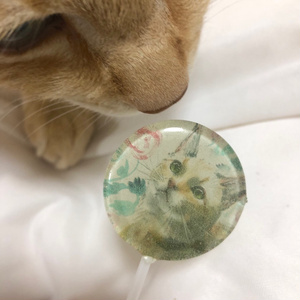 sale 4個セット!ネコアート飴 Find your kitty! Cat Candy
