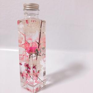 ハーバリウム 『桜』