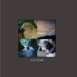 Almost Monthly Photobook vol.1(デジタル版)