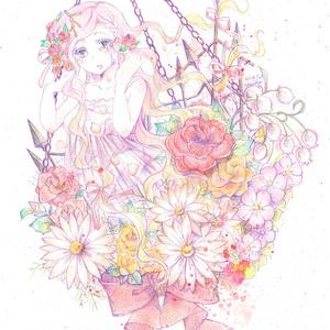 ポストカード(花籠)