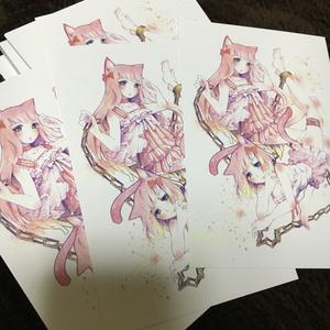 ポストカード(双子猫)
