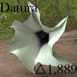 Datura 3Dモデル