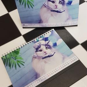 【卓上タイプ】2019年 あいろん&はがね先生オリジナルカレンダー