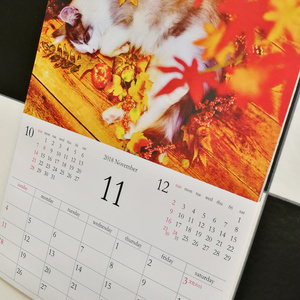 【1月下旬以降発送分】【壁掛けタイプ】はがね先生カレンダー2018年用:壁掛け型