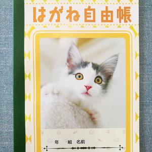 【 A5ノート】はがね先生自由帳【無地タイプ】