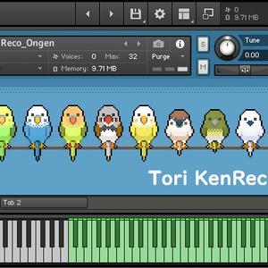 鍵盤ハーモニカ&鍵盤リコーダー音源セット【Kontakt用音源】