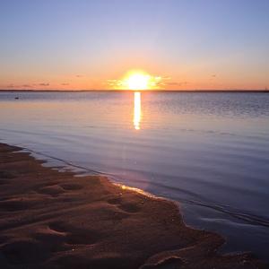 クリアファイル/ Cape Cod