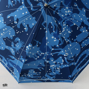 北半球星図の折り畳み傘 / Folding umbrella of Northern Hemisphere constellation