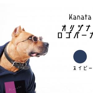【数量限定】宙の旅スペシャルセット