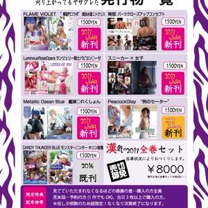 漢気の2017全巻セット