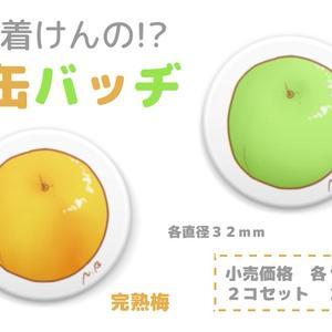 【特典付き】0からはじめる果実酒造り ~梅酒編~
