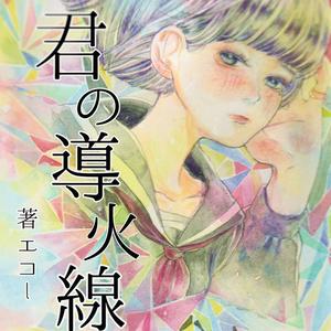 君の導火線ー恋愛小説