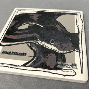 白雲石コースター(ヘビ)