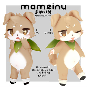 Quest対応オリジナル3Dモデル【mameinu】