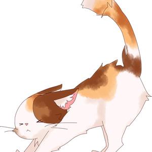 「Cat」猫アクキー③