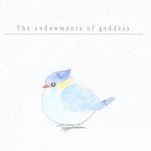【再販】THE ENDOWMENTS OF GODDESS