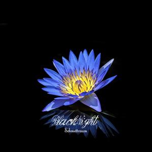 BlackNight