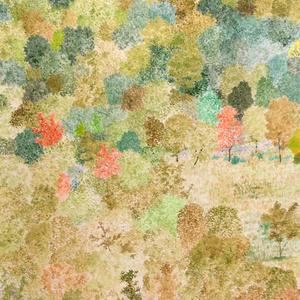 『秋の色彩』