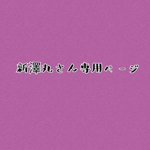 新澤丸さん専用ページ