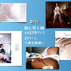 胸と尻と腿(写真集)