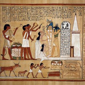 アヌビスが描かれている『 死者の書 』