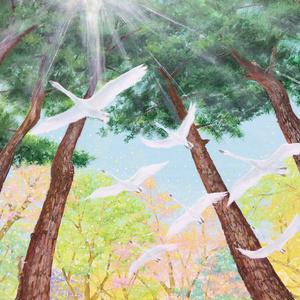 PC-18 ポストカード「光の森Ⅱ」