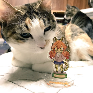 猫科JKアクリルフィギュア