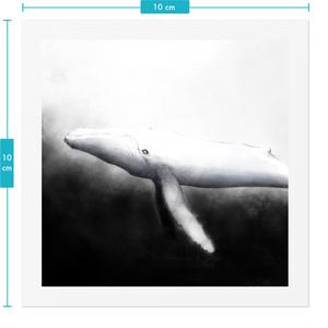 クジラ ステッカー