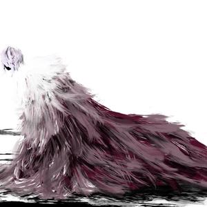 「羽っ子図鑑1」