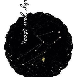 キラキラお星さまポスカ