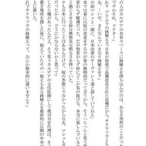 天の光はすべて星【ロマニ関係再録本】