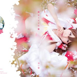 東方巫女桜(ROMのみ)